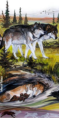 Wolves in Native American Culture | Wolf Song of Alaska